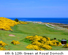 Royal Dornoch Golf Club - No.12
