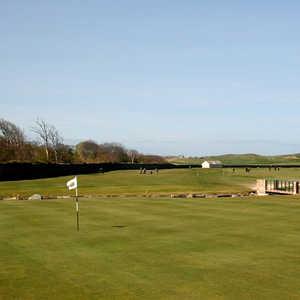 Dunbar Golf Club - Deer Wall
