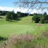 A view of green #4 at Championship from Greenock Golf Club