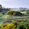 A superb looking tee shot at Irvine Bogside