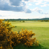 A view of the 7th hole at Strathtyrum Course from St. Andrews Links